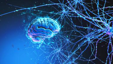 Cosa é Un Neurone Artificiale E La Storia Del Perceptron, Intelligenza Artificiale e Deep Learning