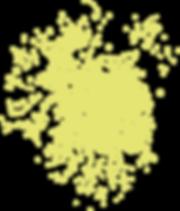 Spritzer_gelbgrün.png