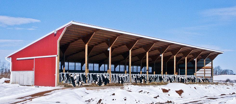 Calf barn designs joy studio design gallery best design for Dairy barn plans