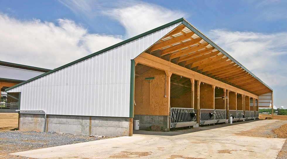 King Dairy Barns King Construction