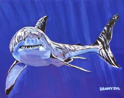 Shark Shark Shark