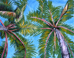 """I See Palm Trees"""