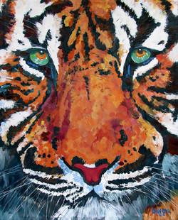 """""""Tiger Vision"""""""
