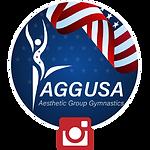 USA IG icon.png