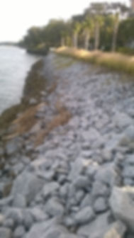 Riprap 2yrs after.jpg