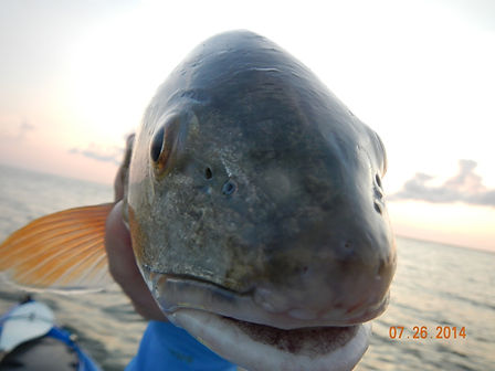 redfish smile SGI.JPG