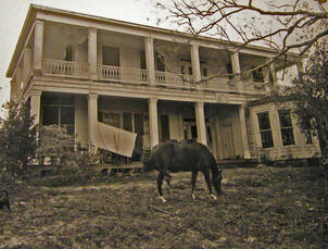 Orman House Pictures