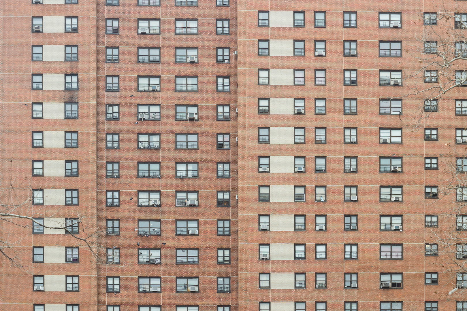 Residencial Houses in Harlem, December 2014