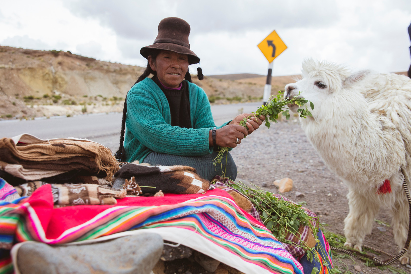 A woman is feeding a lama, Colca Valley, February 2016