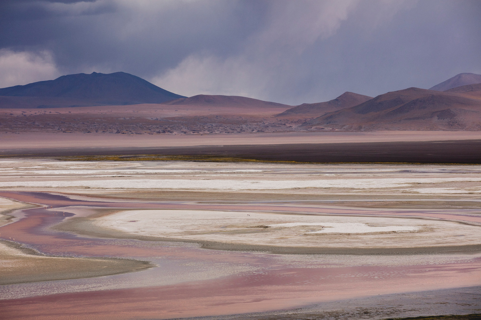 Laguna Colorada, Bolivia. February 2016