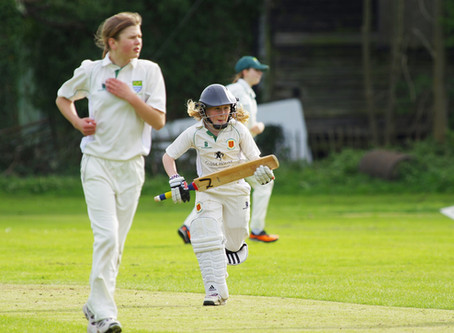 3rd XI defeat champions to stay in Division Two