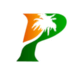 City of Palmview logo