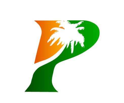 City of Palmview logo