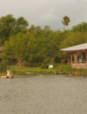 World Birding Center: Llano Grande