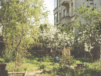 Urban Gardening with Permaculture