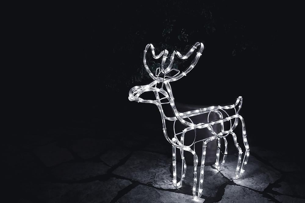 Reindeer glow