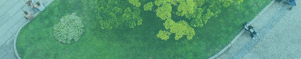 Climate Week Webiste Banner Image.jpg