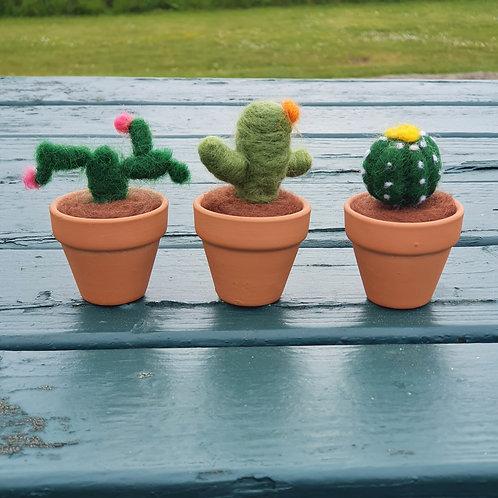 mini cacti felting kit