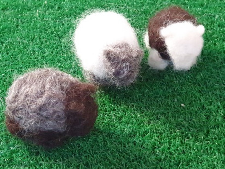 How to... Mini Sheep Felting