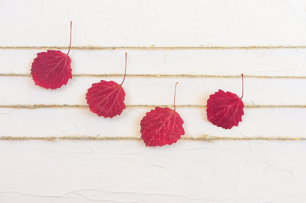 Burgundy autumn leaves and natural jute