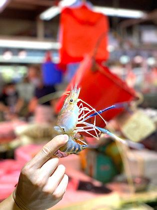 越南羅氏大頭蝦 (半斤/ 0.5catty)