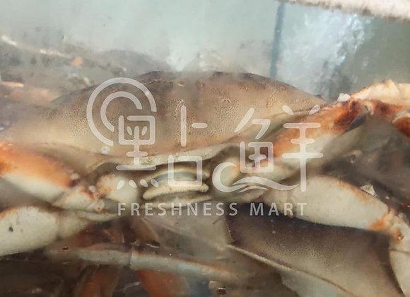 麵包蟹(斤)