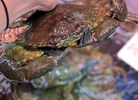 肉蟹 (斤)