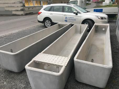 Alp Brunnen