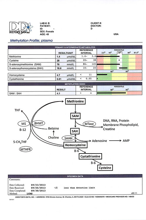 SAM-e Homocysteine Plasma Test(MP)(Dr. Amy Yasko)