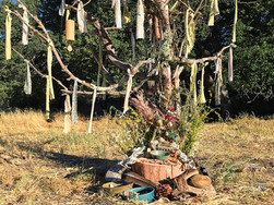 """The Tree of Blessings, created at the """"Drinking from the Well: The Sacred Work of Grief"""" 3-Day Grief Ritual Retreat at Loving Earth Sanctuary near Lockwood, CA over Memorial Day Weekend, May 2018. Read the full story on the link below."""
