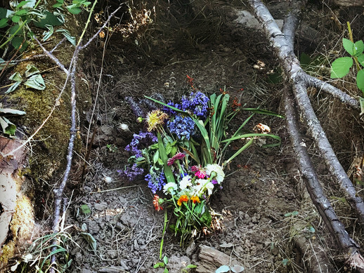 """The grave of a dead fawn found the day before the """"Drinking from the Well: The Sacred Work of Grief Community Grief Ritual in Eugene, OR, July 2018. Read the full story on the link below."""