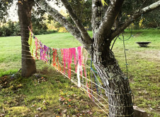 """A weaving made between an apple tree and an oak tree at """"The Prayer of Life: Weaving Grief & Gratitude"""" 3-day retreat at Sweet Peace Farm, Sebastopol, CA in September, 2018."""