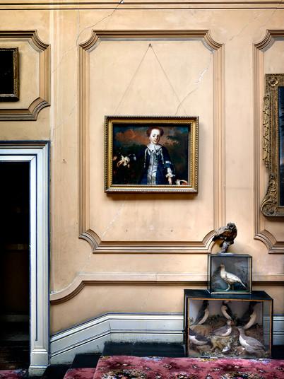 19a) Corridor with Stuffed Birds, Ireland