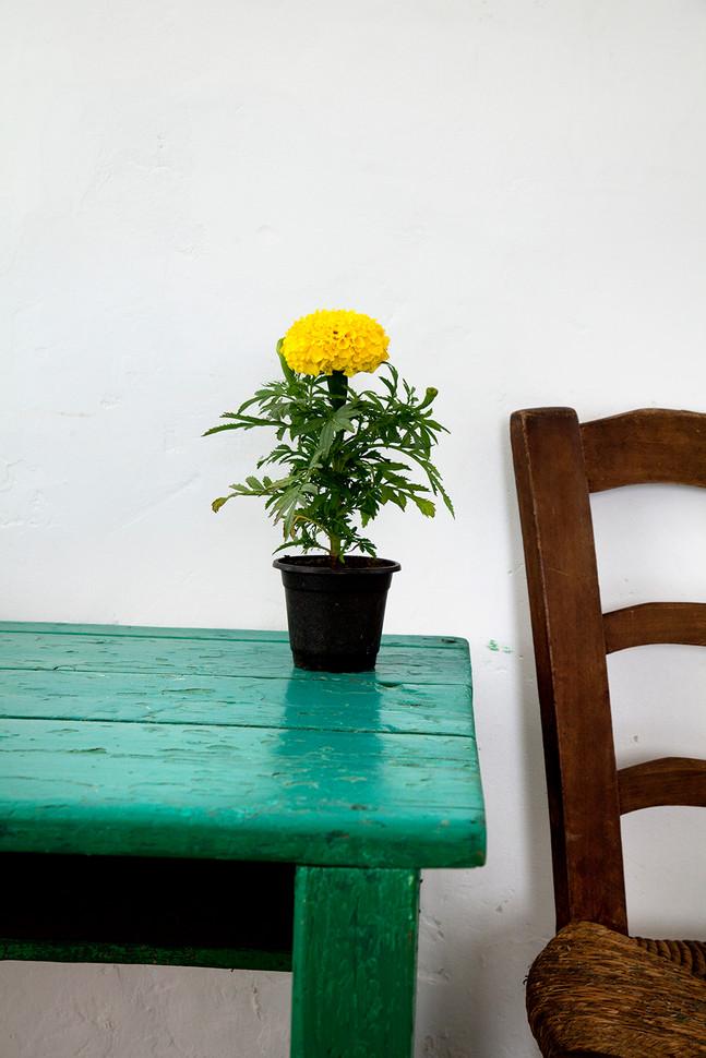 ROOM_Chair_140503_CPRS_5508.jpg