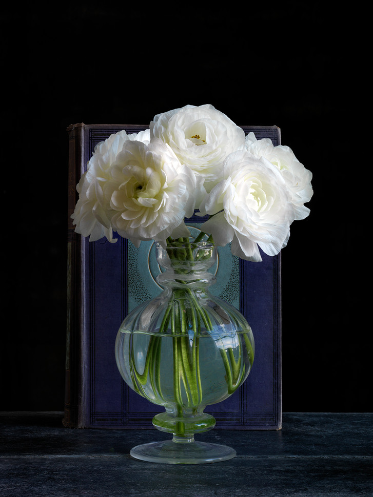 White Ranuculus with Book fo the Universe