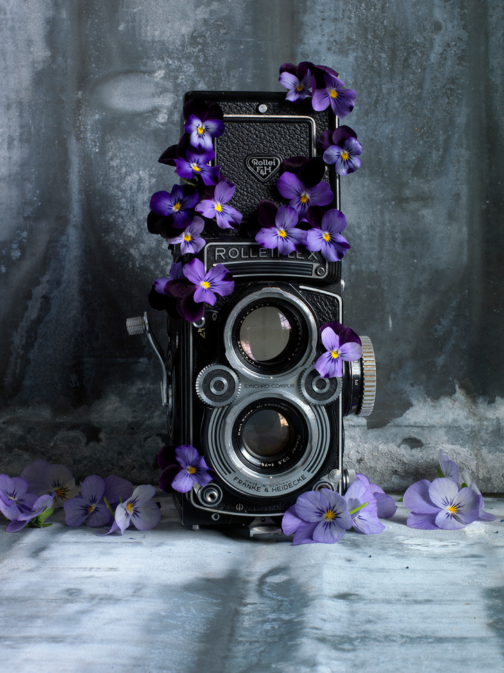 Flower Rollei