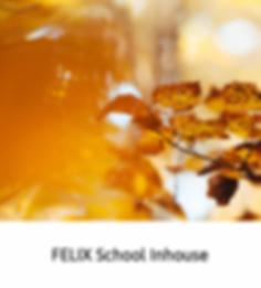 Felix School Inhouse