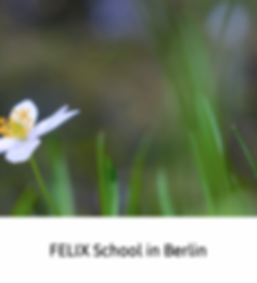 Felix School in Berlin
