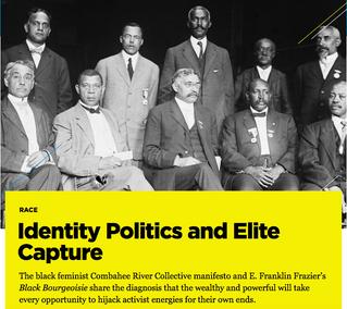 Identity Politics & Elite Capture