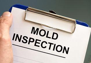 Mold%20Clip%20Board_edited.jpg