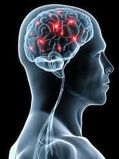 Effets du stress sur notre corps, nos émotions et notre comportement. Le stress résulte des efforts d'adaptation de l'organisme. Mais à trop solliciter l'organisme, on risque de l'épuiser. Quand le stress s'installe dans la durée, il peut ainsi avoir de lourdes conséquences sur la santé. L'état de stress chronique se manifeste par :   des symptômes physiques : douleurs (coliques, maux de tête, douleurs musculaires, etc.) troubles du sommeil, de l'appétit et de la digestion, sueurs inhabituelles, épuisement, sentiment d'oppression, …    des symptômes émotionnels : sensibilité et nervosité accrues, crises de larmes ou de nerfs, angoisse, excitation, tristesse, mal-être, ...    des symptômes intellectuels : troubles de la concentration (oublis, erreurs), difficultés à prendre des initiatives ou des décisions, … Valérie ALEGRE Hypnose Psycho-énergétique 78