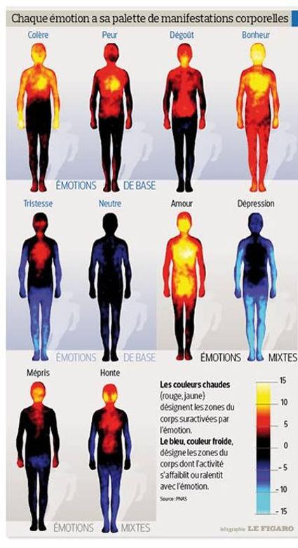 Spécial COVID carte couleurs des émotions. La «carte corporelle des émotions » établie par des chercheurs finlandais. Leurs travaux, publiés fin décembre 2013 dans les compte rendus de l'Académie des sciences américaine (PNAS), confirment notamment que les principales émotions humaines, que sont la peur, la tristesse ou le bonheur, sont ressenties physiquement de la même façon pour tous, quelle que soit la culture d'origine de l'individu. Valérie ALEGRE Hypnose Psycho-énergétique 78