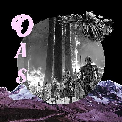 OAS Council logo.png