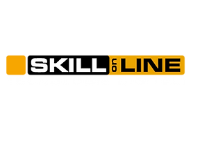 skillonline.png