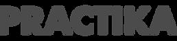 logopractika.png