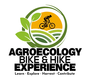 LOGO%20AGROECOLOGY%202_edited.png