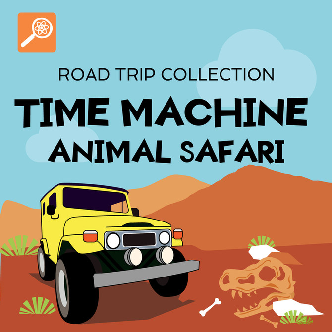 Time Machine Animal Safari Road Trip