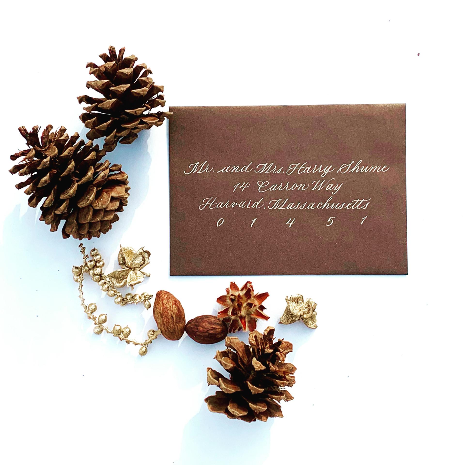 Chocolate Shimmer & Gold Envelopes