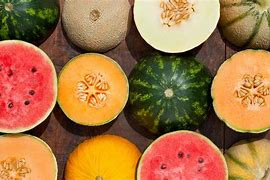 Melons are nutrient therapy!