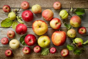 DFM apple variety.jpg